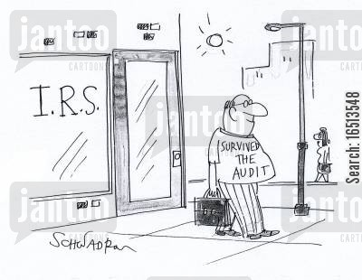 survivals cartoon humor: IRS: I Survived the Audit.