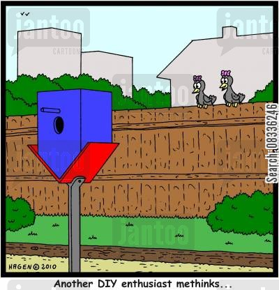 birdhouse cartoon humor: 'Another DIY enthusiast methinks...'
