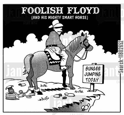 bungee cartoon humor: Foolish Floyd...(and his mighty smart horse).