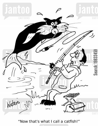 fishing trip cartoon humor: 'Now that's what I call a catfish!'