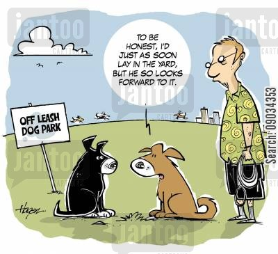 lazies cartoon humor: To be honest, I'd just as soon as lay in the yard, but he so looks forward to it.