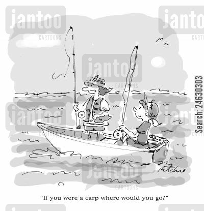 big fishes cartoon humor: 'If you were a carp where would you go?'