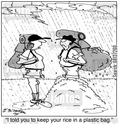 camping gear cartoon humor: 'I told you to keep your rice in a plastic bag.'
