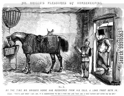 horsekeeping cartoon humor: Mr Briggs's Pleasures of Horsekeeping - No. X.