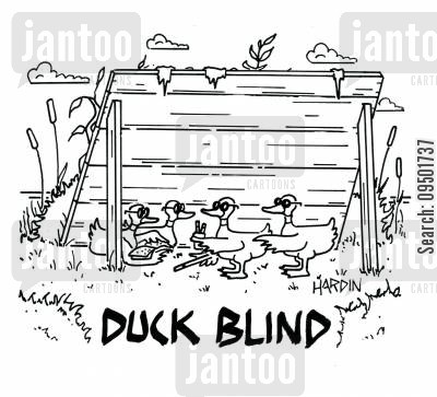 duck blinds cartoon humor: Duck Blind.