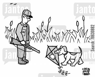 fetch cartoon humor: Hunting dog brings back downed kite to hunter.