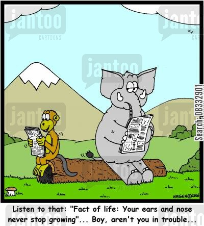 facts of life cartoon humor: 'Listen to that: 'Fact of life: Your ears and nose never stop growing'... Boy, aren't you in trouble...'