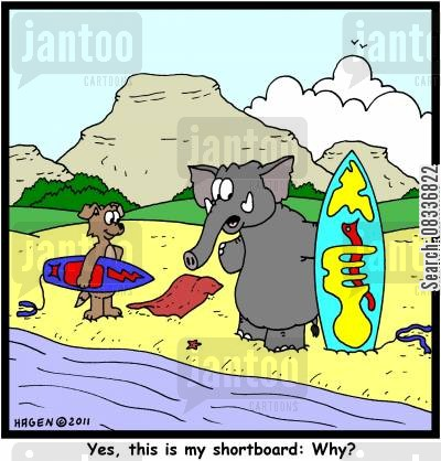 boarding cartoon humor: 'Yes, this is my shortboard: Why?'