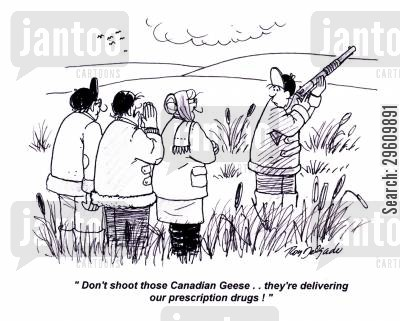 geese cartoon humor: 'Don't shoot those Canadian Geese.. they're delivering our prescription drugs!'