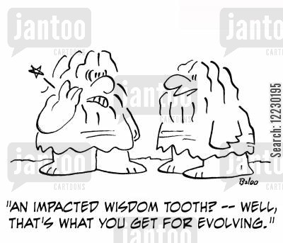 toothaches cartoon humor: 'An impacted wisdom tooth? — well, that's what you get for evolving.'