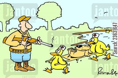 first aid cartoon humor: Dog being carried off by ducks.