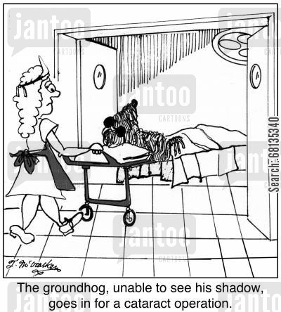 groung hogs cartoon humor: The groundhog, unable to see his shadow, goes in for a cataract operation.