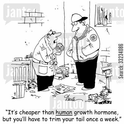 growth hormones cartoon humor: 'It's cheaper than human growth hormone, but you'll have to trim your tail once a week.'