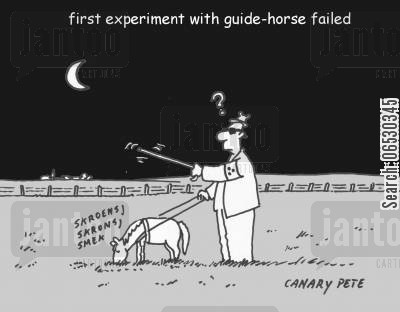 guide dog cartoon humor: First experiment with guide-horse failed.