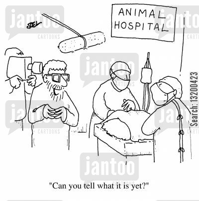 harris cartoon humor: Animal Hospital