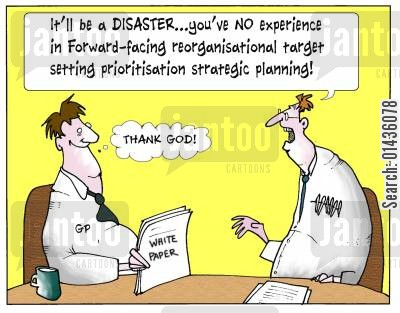 consortiums cartoon humor: 'It'll be a disaster...you've no experience in Forward-facing reorganisation target setting prioritisation strategic planning.'