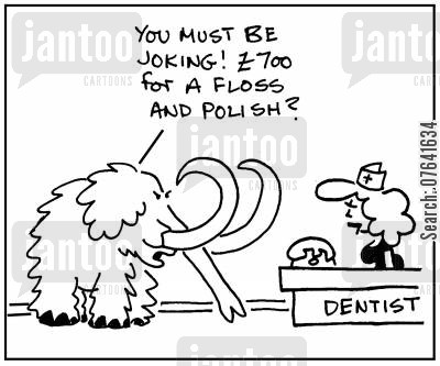 mammoths cartoon humor: 'You must be joking. £700 for a floss and polish.'