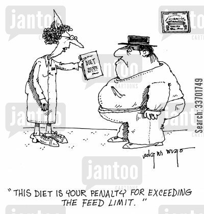 diet sheet cartoon humor: 'This diet is the penalty for exceeding the feed limit.'