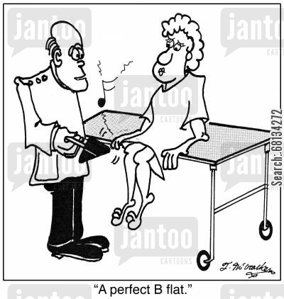 reflex cartoon humor: 'A perfect B flat.'
