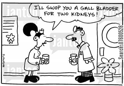 kidney cartoon humor: Doctor and nurse having a chat.
