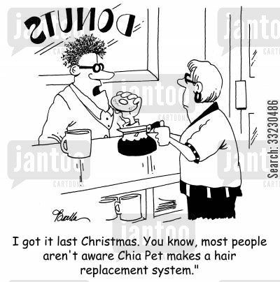 chia pet cartoon humor: 'I got it last Christmas. You know, most people aren't aware Chia Pet makes a hair replacement system.'