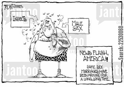 comparisons cartoon humor: 'News flash America!! Same Sex Marriages have been around for a long, long time...'