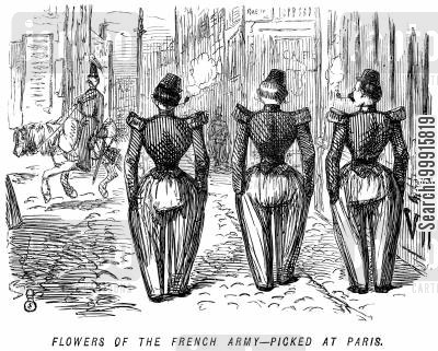 parade cartoon humor: Flowers of the French army - picked at Paris