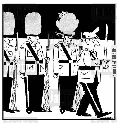 changing of the guard cartoon humor: Soldior has a cat instead of a hat on his head.