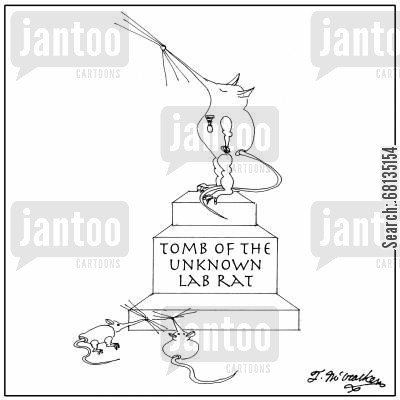 grave markers cartoon humor: Tomb of the unknown lab rat.