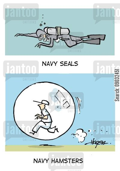 hamster wheel cartoon humor: Nave SEALS - Navy Hamsters