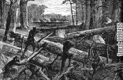 general sherman cartoon humor: Sherman's March through South Carolina- Road at the Swamp Crossings