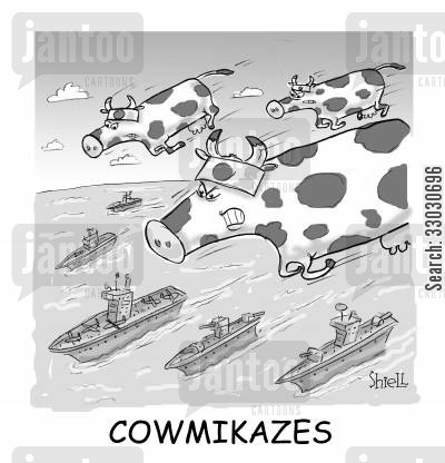 naval battle cartoon humor: COWMIKAZES