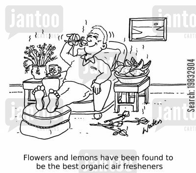 air fresheners cartoon humor: Flowers and lemons have been found to be the best organic air fresheners.