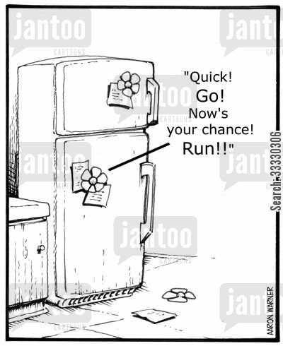 appliance cartoon humor: 'Quick! Go! Now's your chance! Run!!'