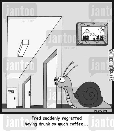 needing the loo cartoon humor: Fred suddenly regretted having drunk so much coffee...