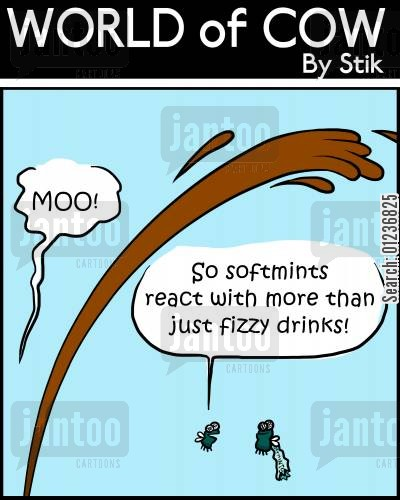 fun science cartoon humor: 'So softmints react with more than just fizzy drinks!'
