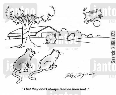 rhyme cartoon humor: 'I bet they don't always land on their feet.'