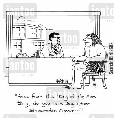 administrative job cartoon humor: 'Aside from this 'King of the Apes' thing, do you have any other administrative experience?'