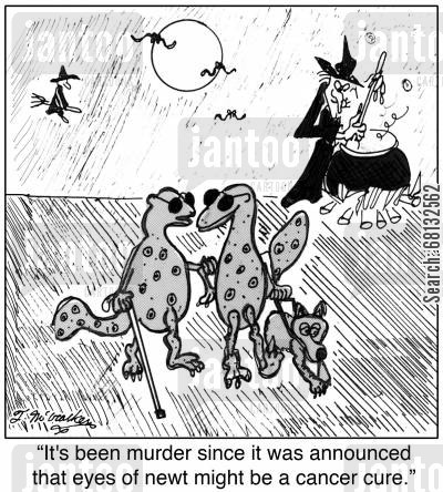 exotic ingredient cartoon humor: 'It's been murder since it was announced that eyes of newt might be a cancer cure.'