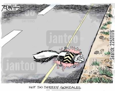dead animals cartoon humor: Not So Speedy Gonzales.
