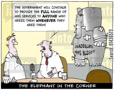 elephant in the corner cartoon humor: 'The government will continue to provide the full range of NHS services to anyone who needs them whenever they need them.'