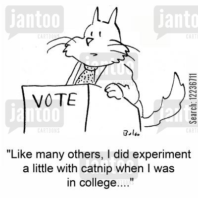 doing drugs cartoon humor: 'Like many others, I did experiment a little with catnip when I was in college....'