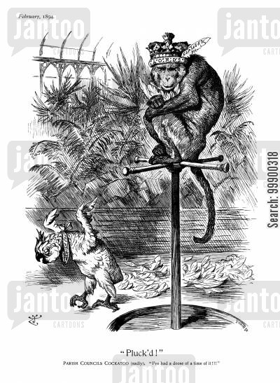 monkeys cartoon humor: Local Government Bill (1894) and the Lords