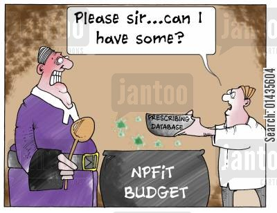 databases cartoon humor: NPFIT Budget