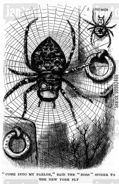 webs cartoon humor: New York Election of 1879- John Kelly as the Spider of the Tammany Web