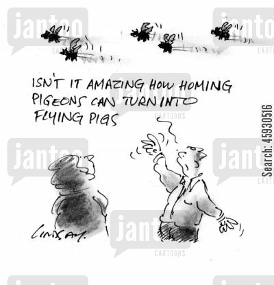 homing pigeons cartoon humor: 'Isn't it amazing how homing pigeons can turn into flying pigs?'