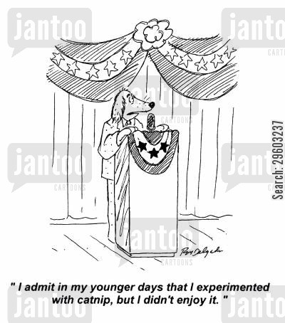 public official cartoon humor: 'I admit in my younger days that I experimented with catnip, but I didn't enjoy it.'