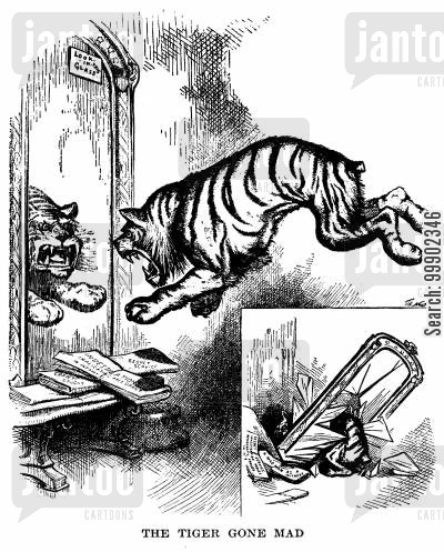 amnesty cartoon humor: The Democratic Tiger Turns on Itself