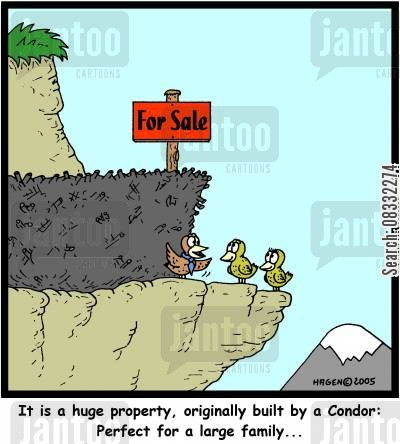 condors cartoon humor: 'It is a huge property, originally built by a Condor: Perfect for a large family...'