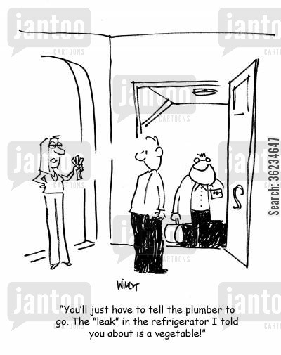 fixing leaks cartoon humor: You'll just have to tell the plumber to go. The 'leak' in the refrigerator I told you about is a vegetable!